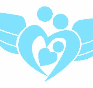 Wings for Falmouth Families blue logo